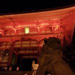 京都・兵庫・愛知観光の旅!ライトアップされた清水寺の紅葉!その前に名代おめんで食事!