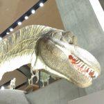 群馬・日光観光!群馬県立自然史博物館でティラノ、華厳の滝・湯滝巡り