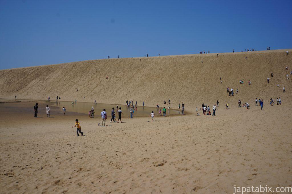 鳥取砂丘 日中