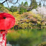 奈良京都お花見観光!帯解寺で安産祈願!花の醍醐寺で桜を愉しむ
