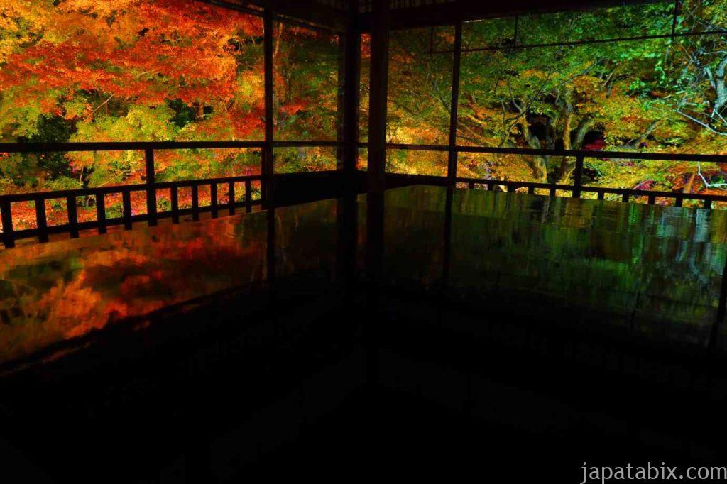 京都 八瀬 瑠璃光院 夜間特別拝観 紅葉ライトアップ