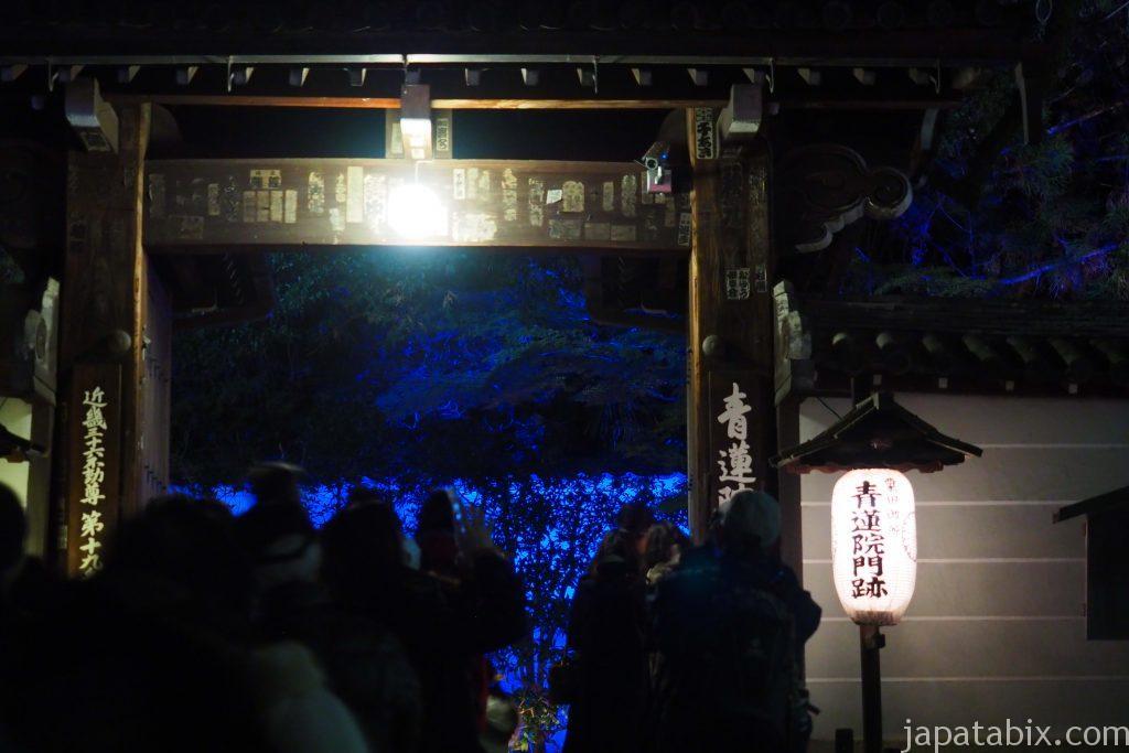 青蓮院門跡の紅葉ライトアップ