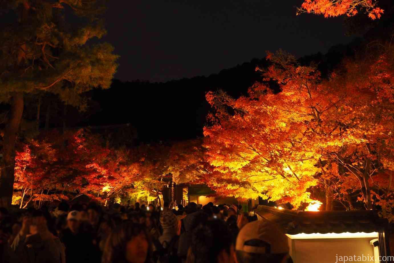 京都 紅葉 永観堂 夜間特別拝観 行列