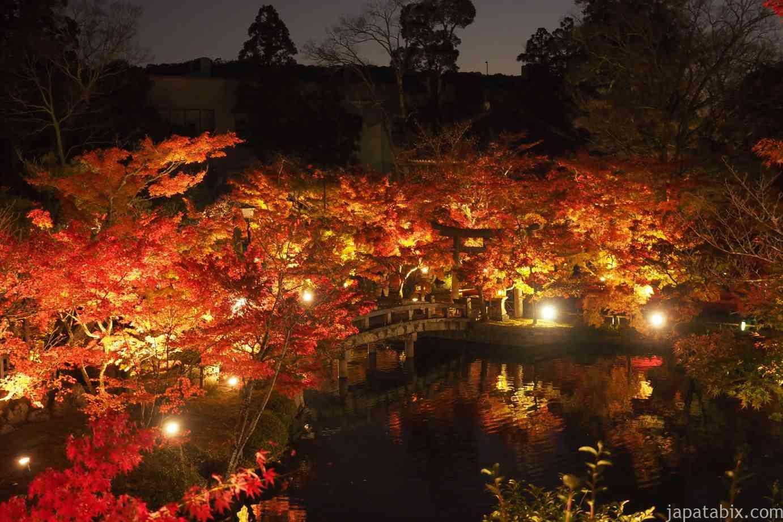 京都 紅葉 永観堂 夜間特別拝観 放生池