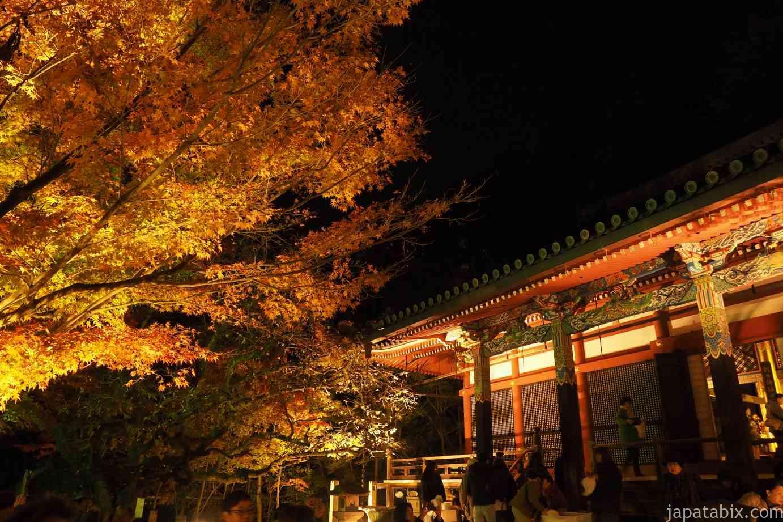 京都 紅葉 永観堂 夜間特別拝観 阿弥陀堂