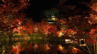 京都 紅葉 永観堂 夜間特別拝観 放生池と多宝塔