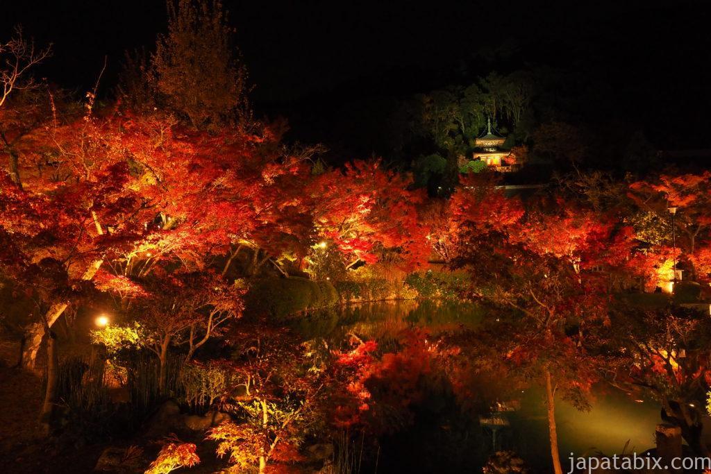 京都 永観堂 夜間特別拝観の様子
