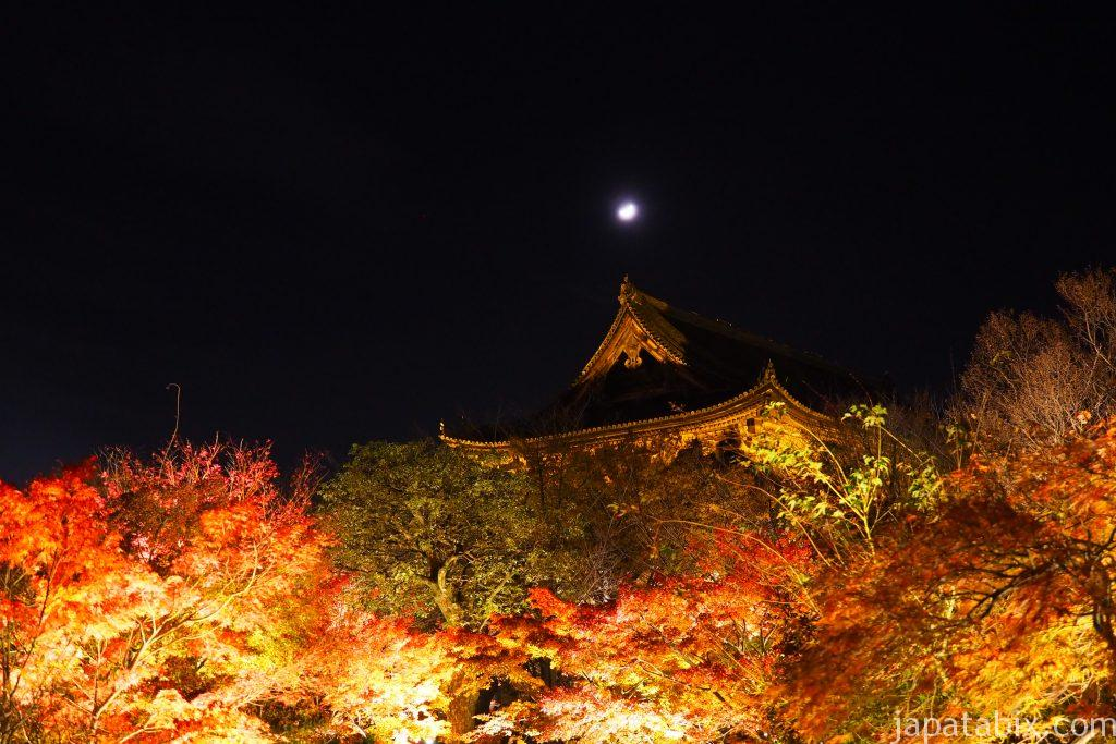 東寺 五重塔と紅葉ライトアップ