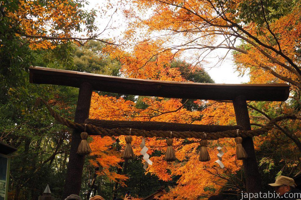 野宮神社の紅葉
