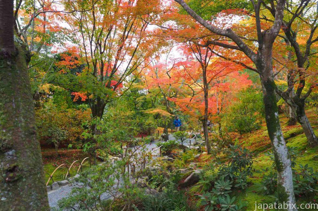 京都 嵐山 天龍寺 早朝拝観 紅葉 曹源池庭園