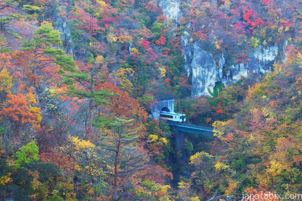 鳴子峡の紅葉と列車