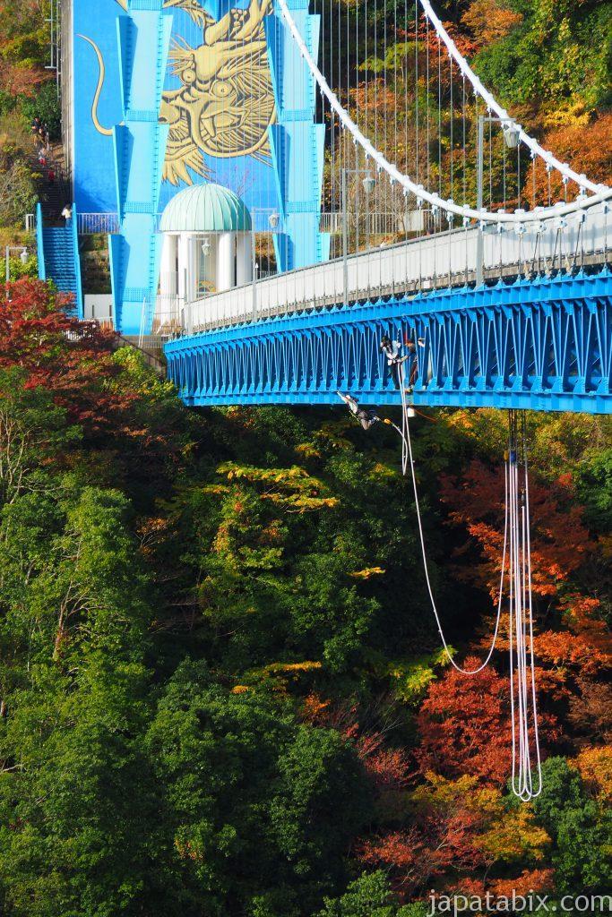竜神大吊橋のバンジージャンプの様子