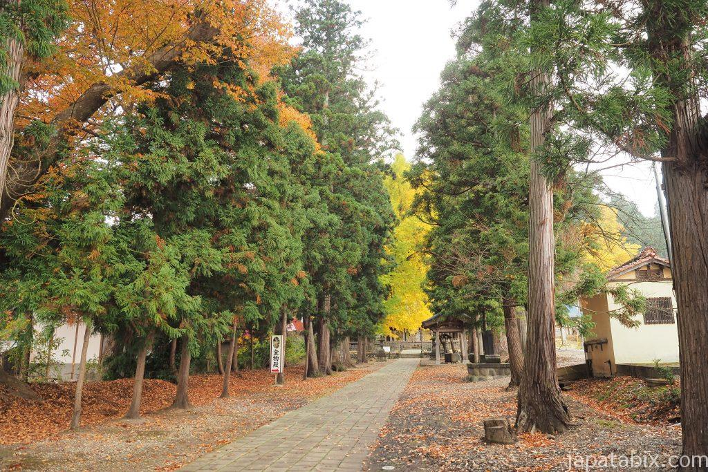 新宮熊野神社のイチョウの紅葉