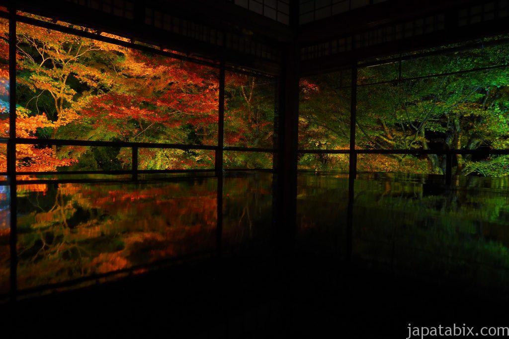 瑠璃光院 秋の夜間特別拝観