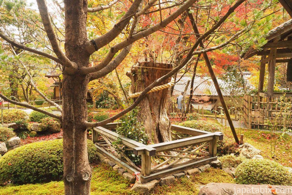 京都 大原 寂光院