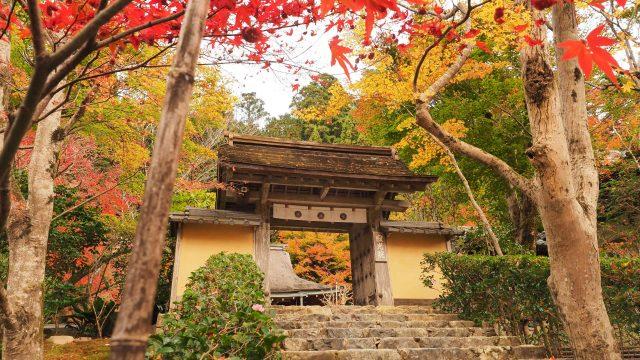 京都 大原 寂光院 山門