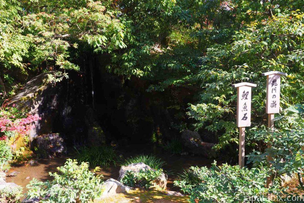 京都 金閣寺 紅葉 龍門滝