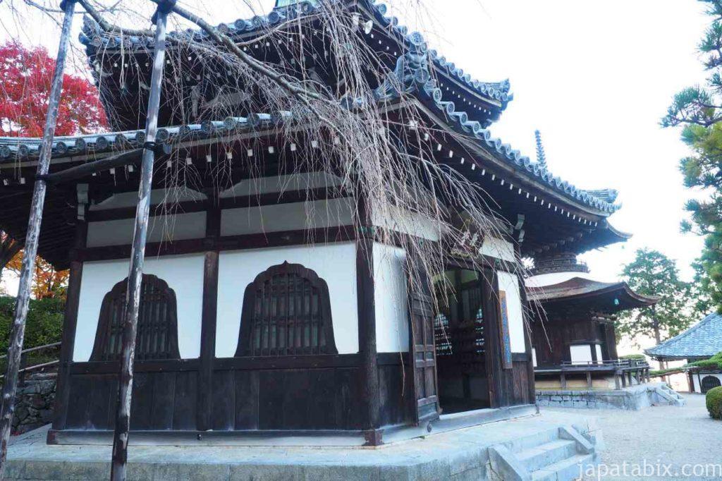 京都 西山 善峯寺 経堂と桂昌院しだれ桜