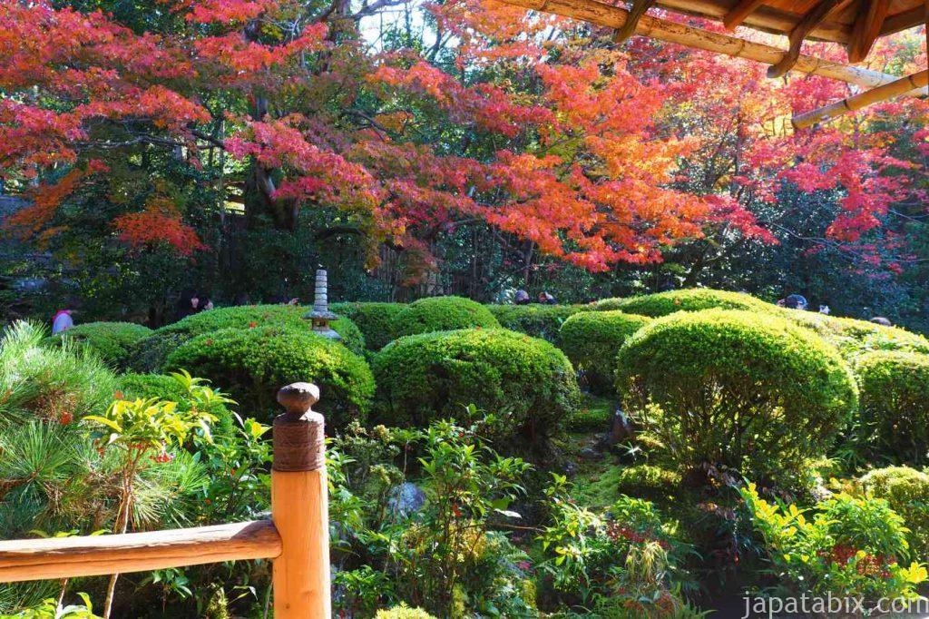 京都 詩仙堂 唐様庭園