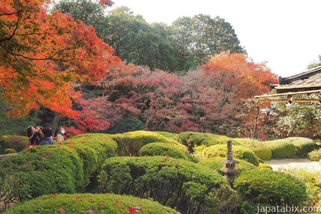 京都 一乗寺 詩仙堂 紅葉 唐様庭園