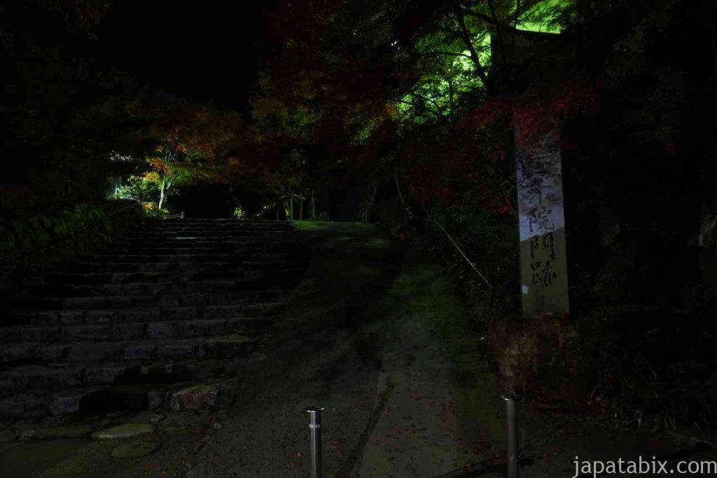 真夜中の京都 大原 三千院