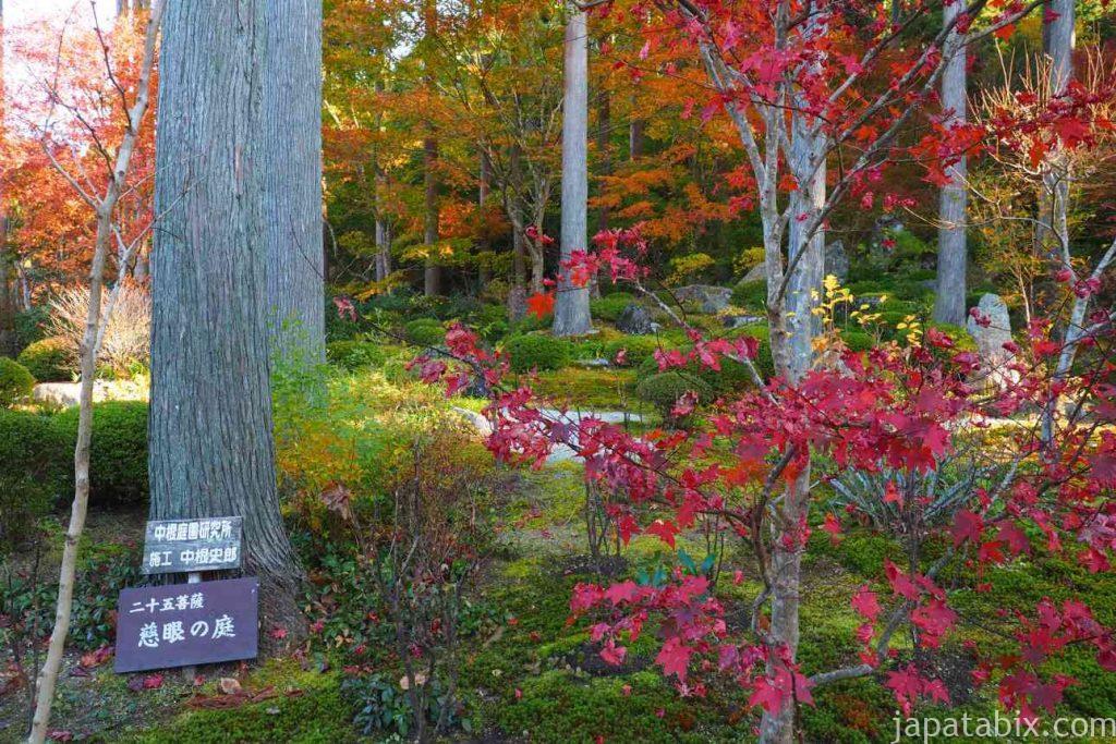 三千院 境内の紅葉