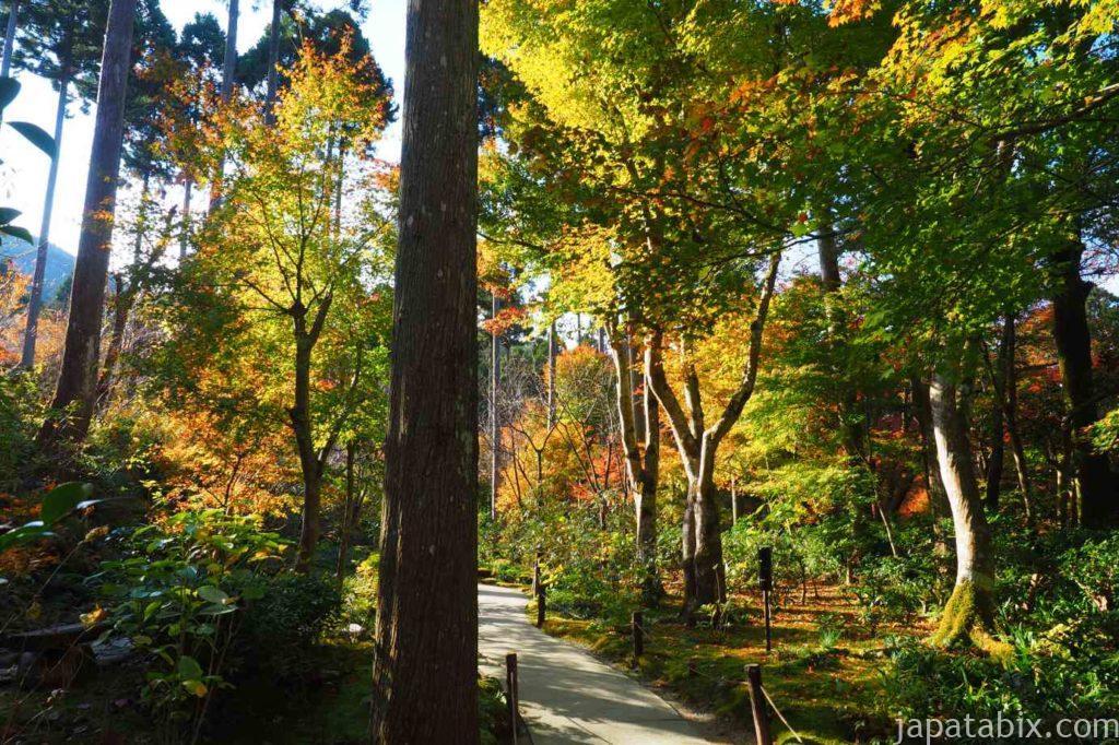 京都 大原 三千院 紅葉 有清園