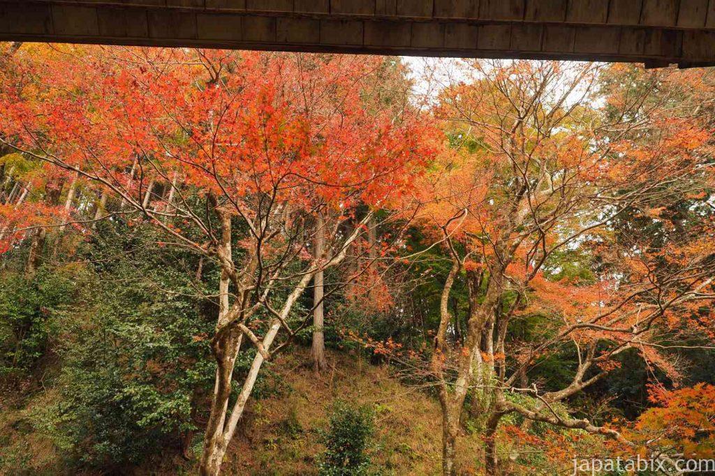 大原 勝林院