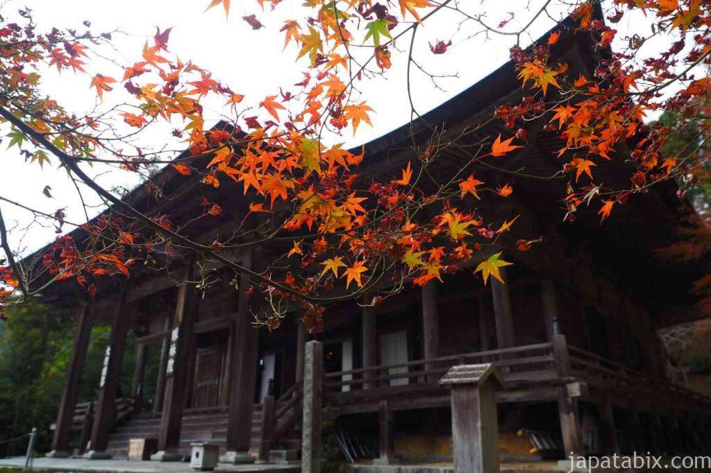 大原 勝林院 本堂と紅葉