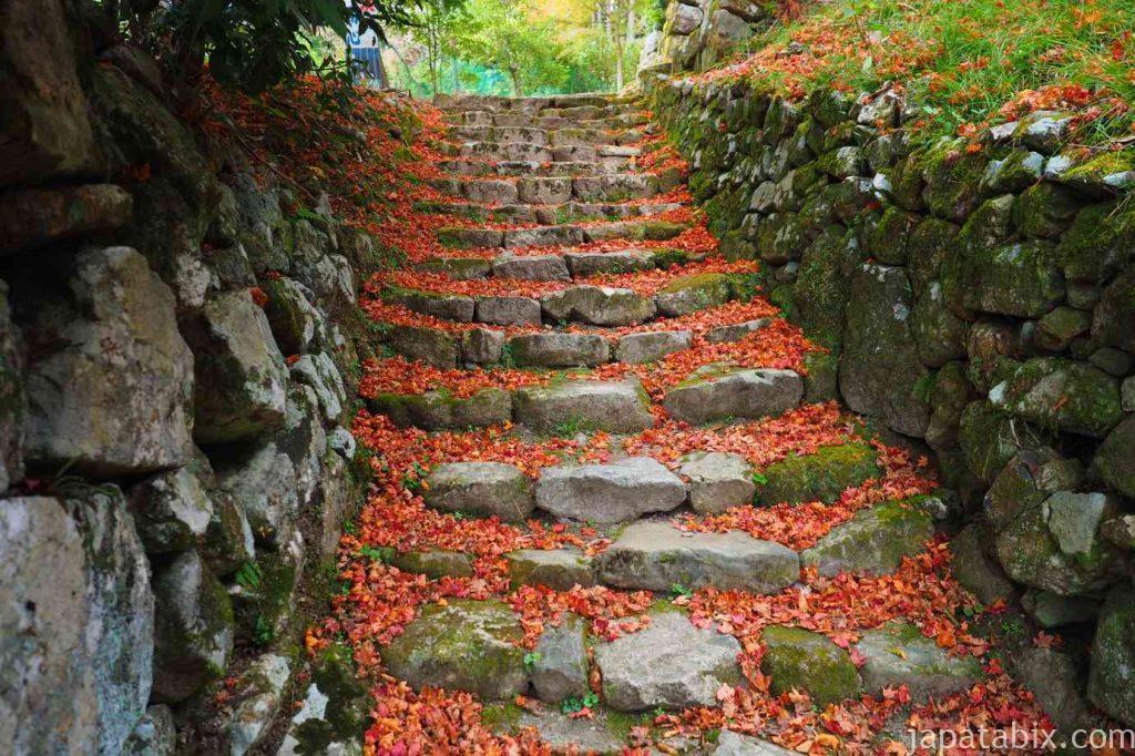 大原 勝林院の紅葉