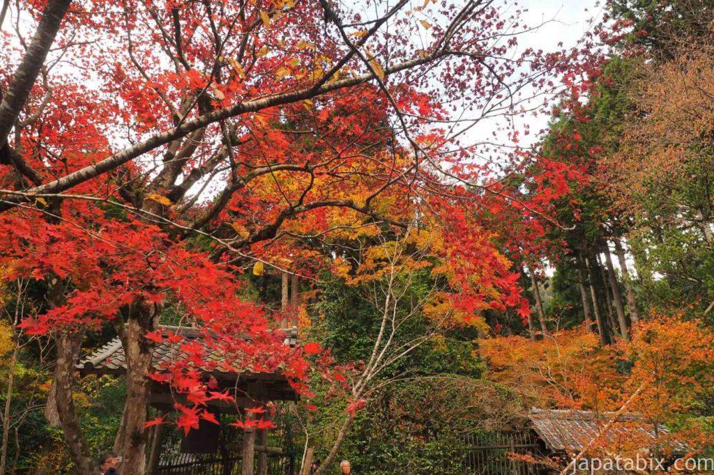 京都 大原 寂光院 紅葉 諸行無常の鐘