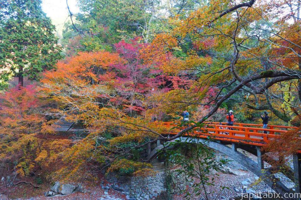 京都 高雄 西明寺 指月橋の紅葉