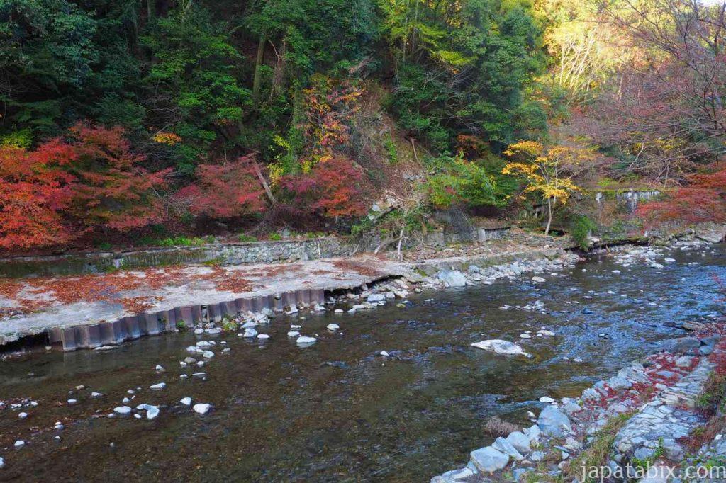 京都 高雄 神護寺 清滝川の紅葉