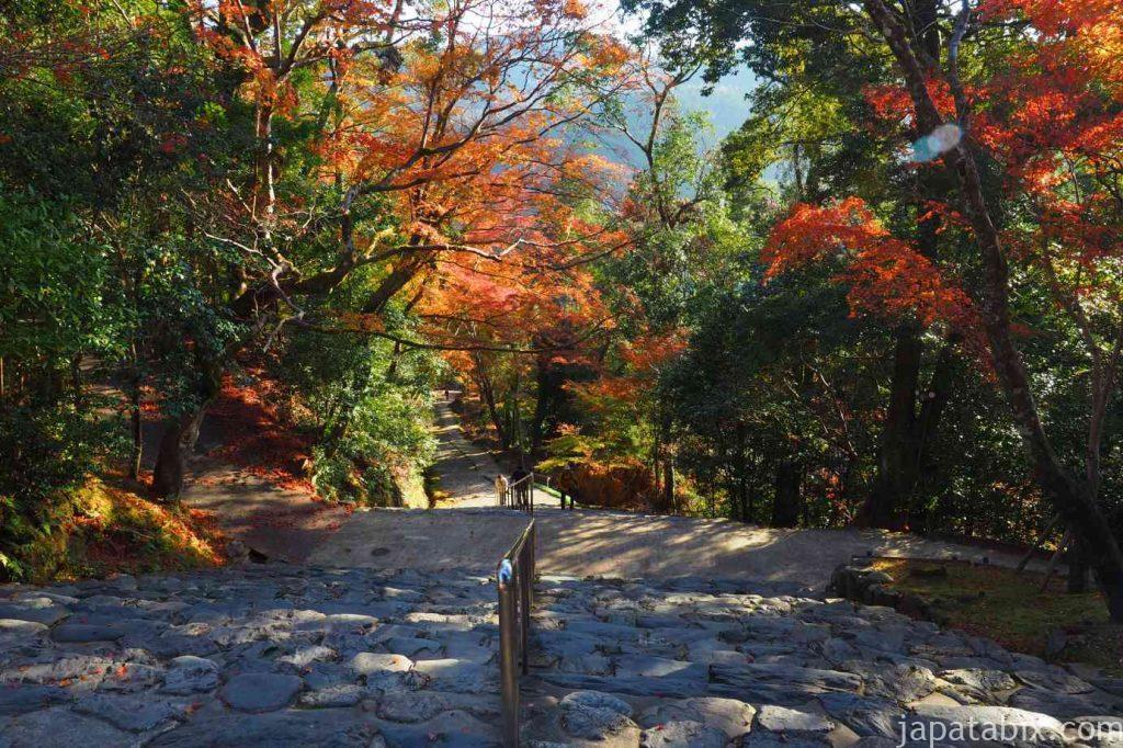 京都 高雄 神護寺 楼門から見た石段