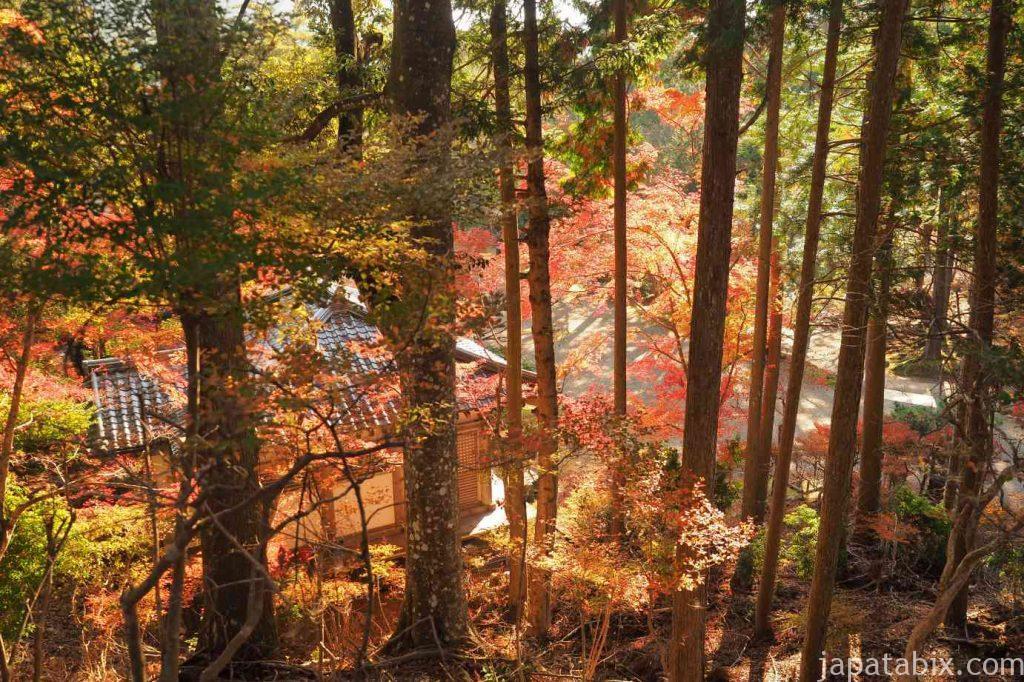 京都 高雄 神護寺 紅葉
