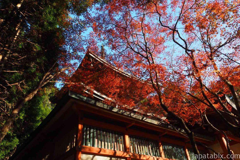 京都 高雄 神護寺 紅葉 多宝塔