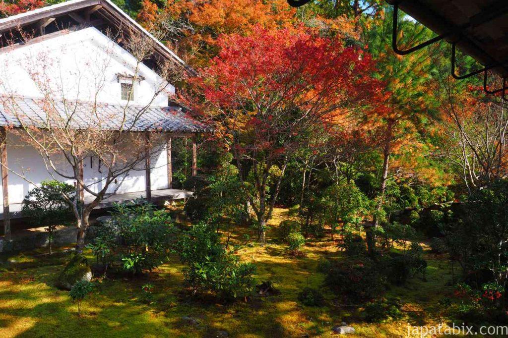 京都 高雄 西明寺 苔庭