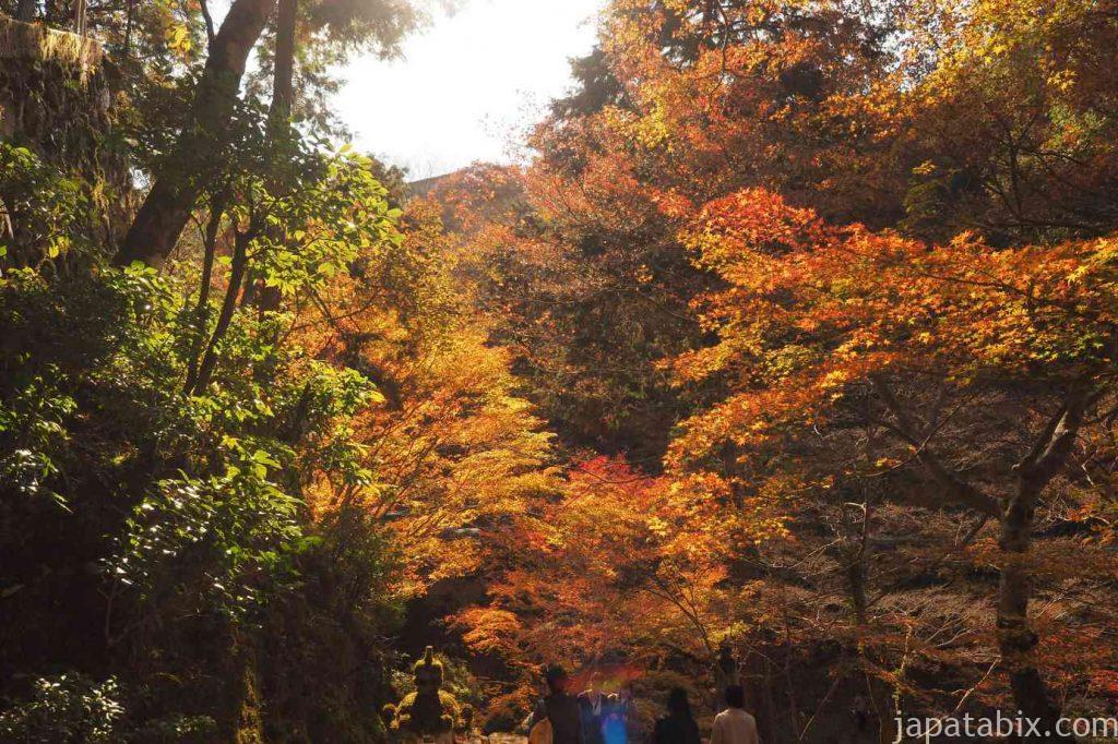 京都 高雄 西明寺 表参道 紅葉