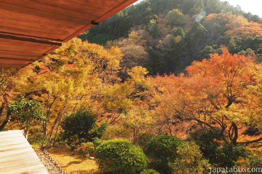 京都 高雄 高山寺 石水院 紅葉