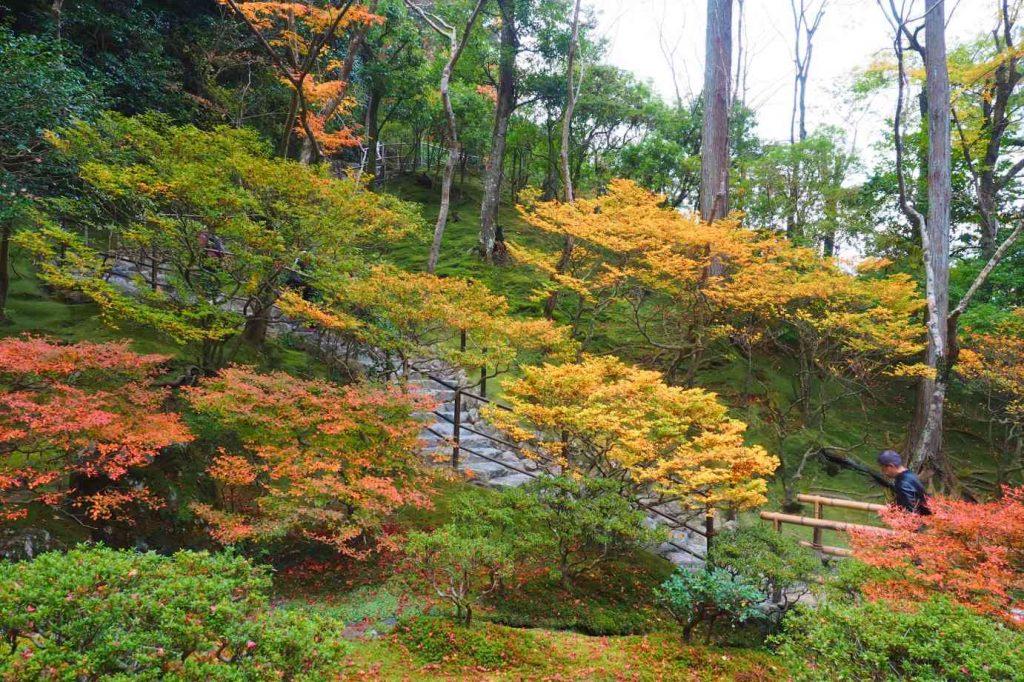 京都 銀閣寺 お茶の井庭園の紅葉