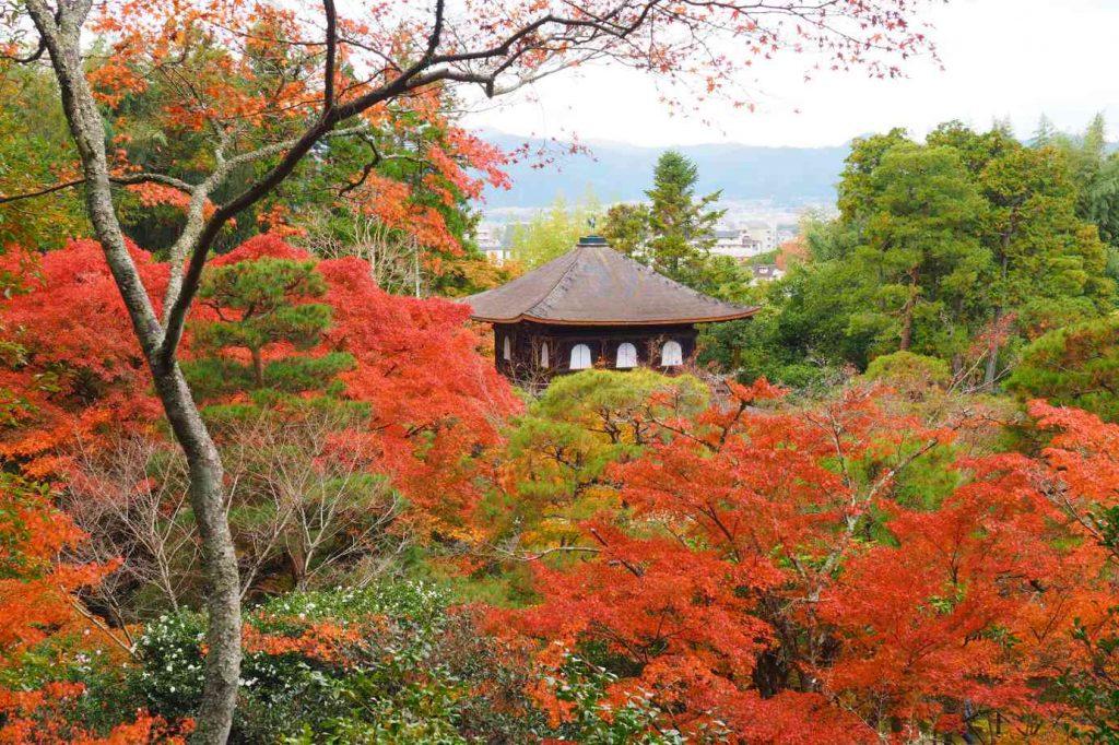京都 銀閣寺 展望台から下る途中に見る銀閣
