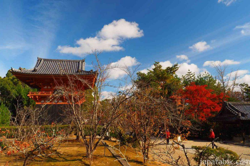 京都 仁和寺 御影堂から見る鐘楼