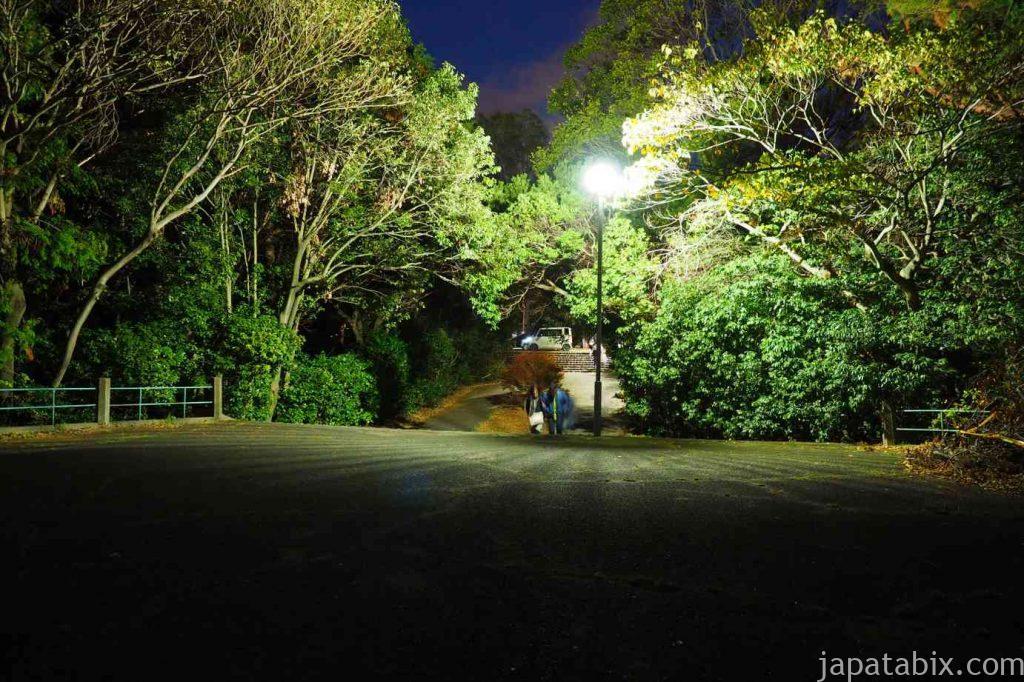 京都 東山山頂 将軍塚から見た夜景