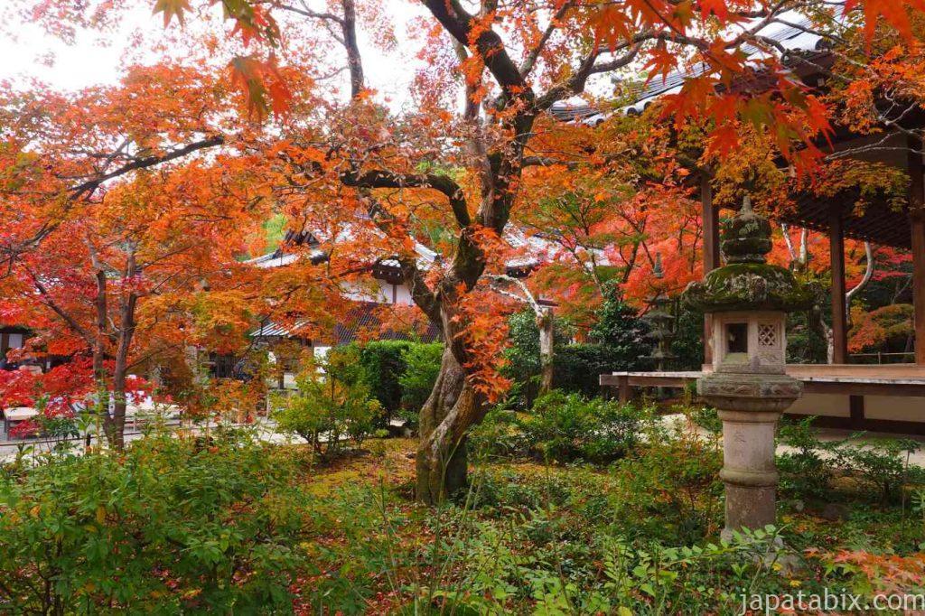 京都 嵯峨 常寂光寺 本堂の紅葉