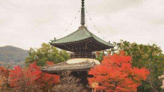 京都 嵯峨 清涼寺 嵯峨釈迦堂 多宝塔の紅葉