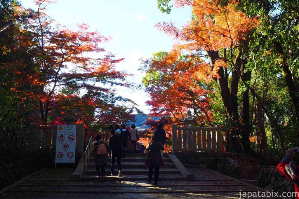 京都 光明寺 境内の紅葉