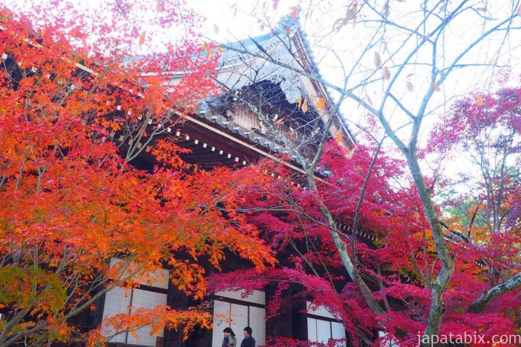 京都 光明寺 御影堂の紅葉