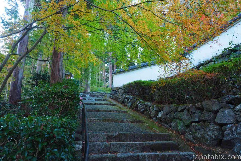 京都 西山 善峯寺境内の紅葉