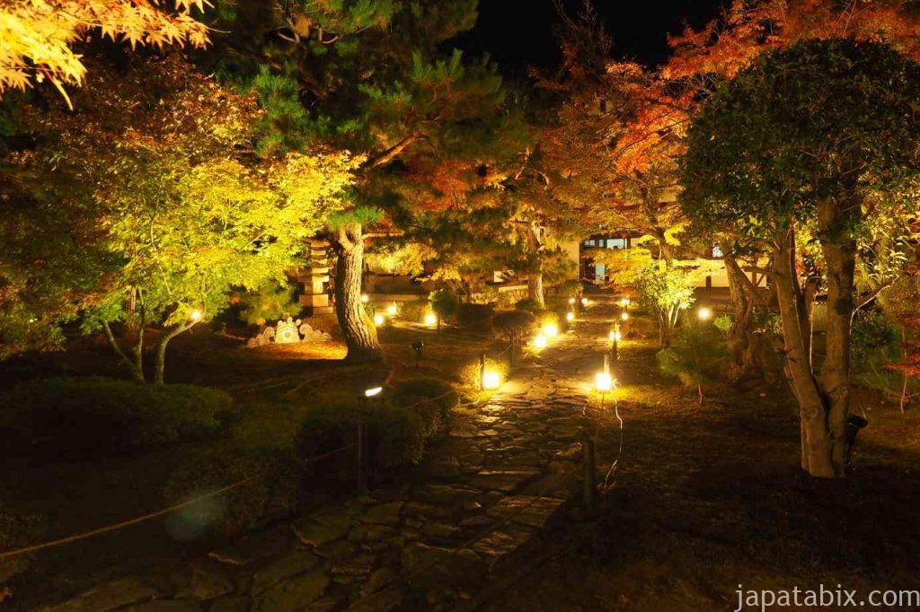 京都 嵯峨 鹿王院 夜間特別拝観 紅葉ライトアップ
