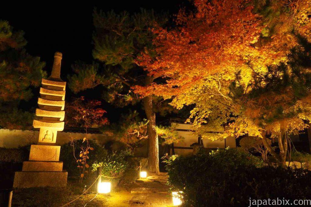 京都 嵯峨 鹿王院 夜間特別拝観 前庭 紅葉ライトアップ